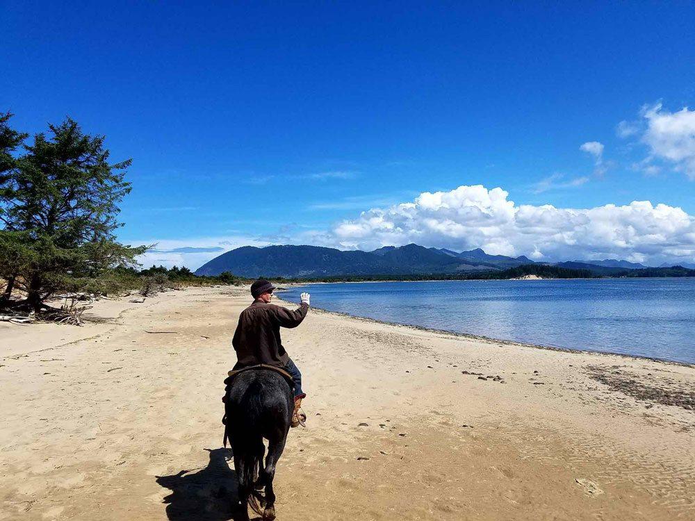 Beach horseback riding. Oregon Beach Rides