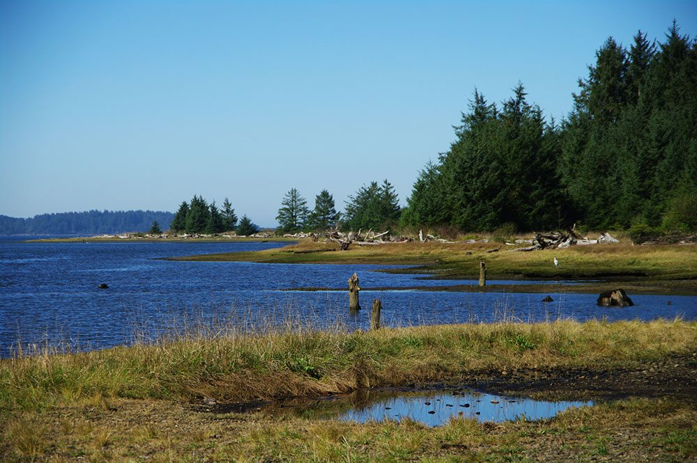 Kilchis Point shoreline