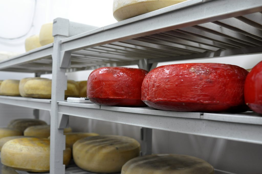 3 Nestucca Bay cheeses