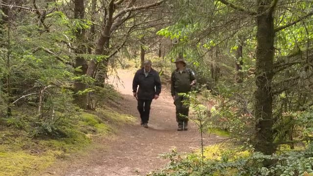 grants getaways sitka sedge hike 2021 05 04